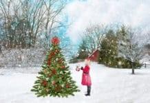 Decemberi tündérország
