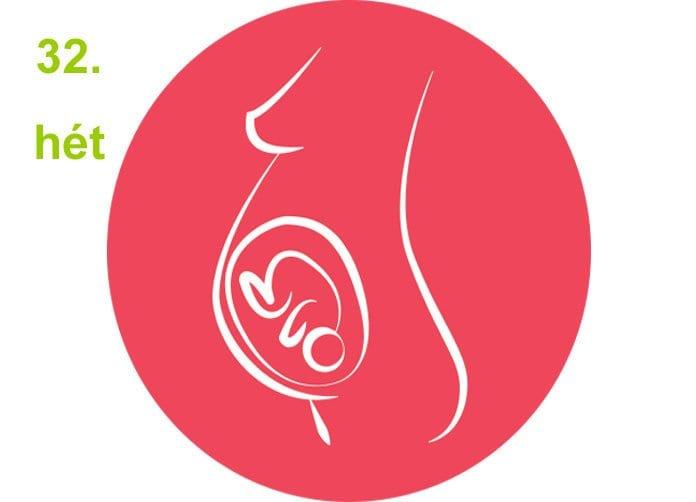 terhességi hetek - 32.hét
