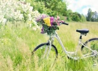 bicikli áll a réten a kosarában virágokkal