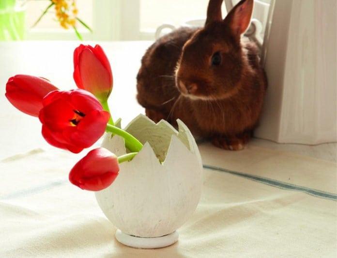 kókuszdióból készült vázában négy szál piros tulipán