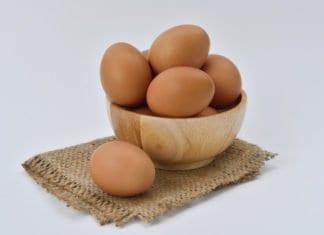 tojások fatálban