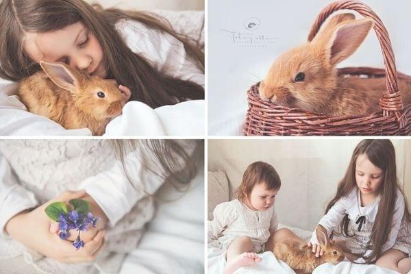 nyuszi Húsvétra