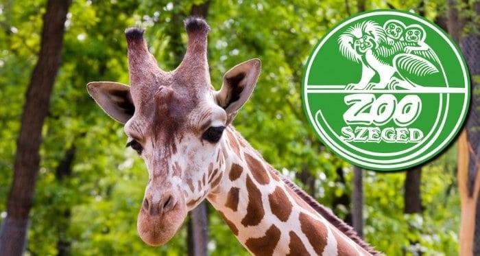 Jászberényi Állat- és Növénykert