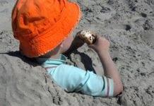 strandos harapnivalók