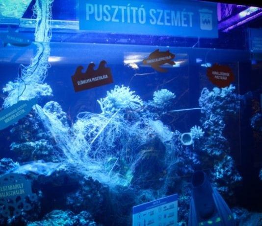 szemetes akvárium, Pécsi Állatkert