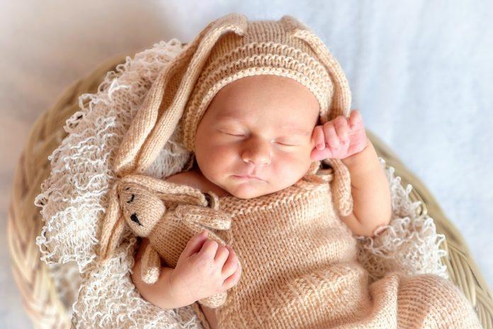 A baba látásának fejlődése